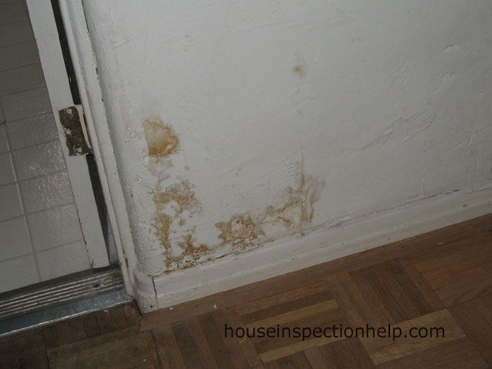 Images Of Termite Damage On Wall With Paint Damage Google Search Termite Damage Termites Baseboards