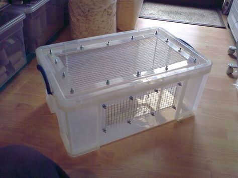 How To Make A Hamster Bin Cage Hamster Diy Cage Hamster Bin