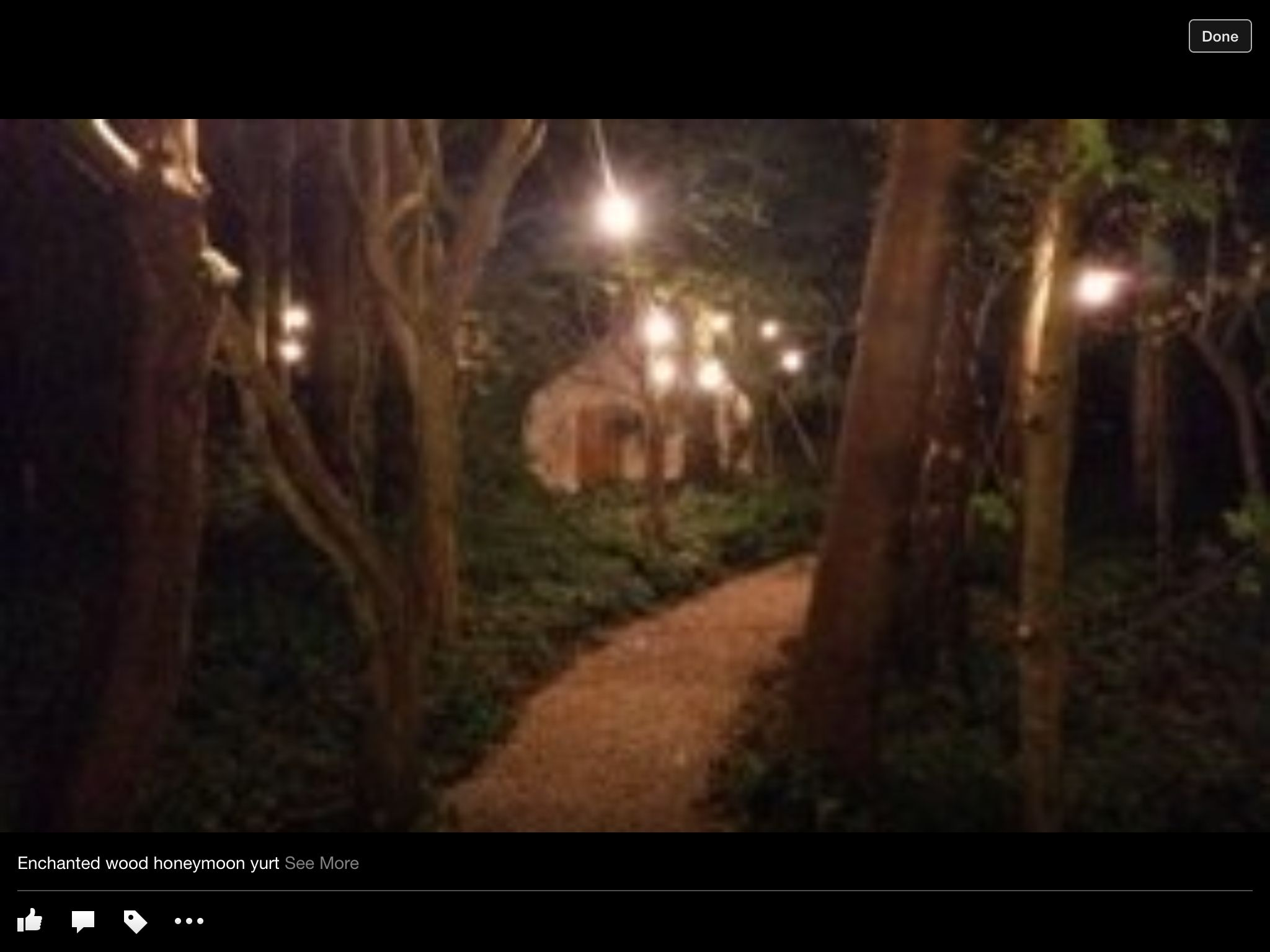 Honeymoon Yurt In Our Enchanted ForestAngrove Park North Yorkshire Wedding Venue