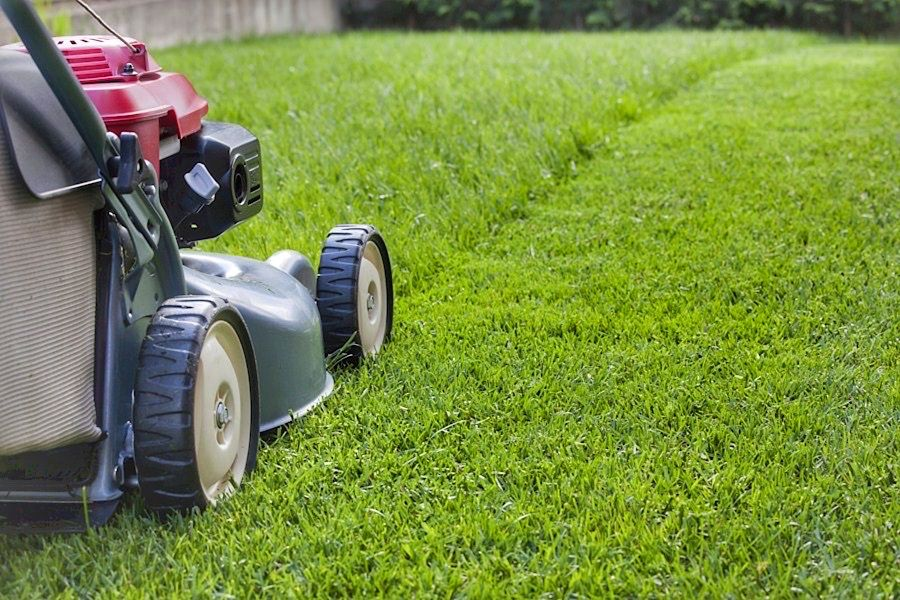 Lawn Mowing Westmeadows Fox Mowing Your Local Gardening