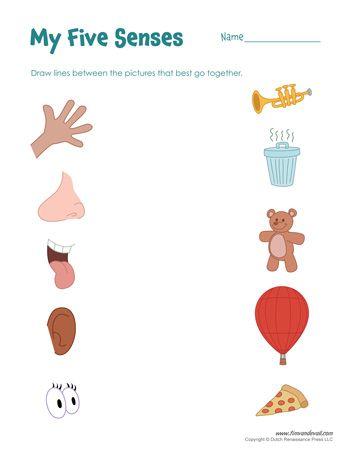 A Set Of Free Five Senses Worksheets 5 Senses Craft For Preschool