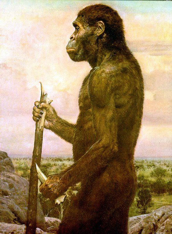 Древние предки человека картинки усов дровосека