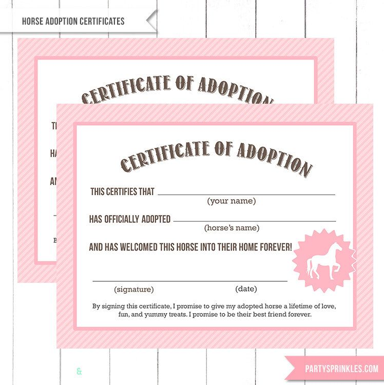 Pink Vintage Horse Pony Party  Adoption Certificate Printable