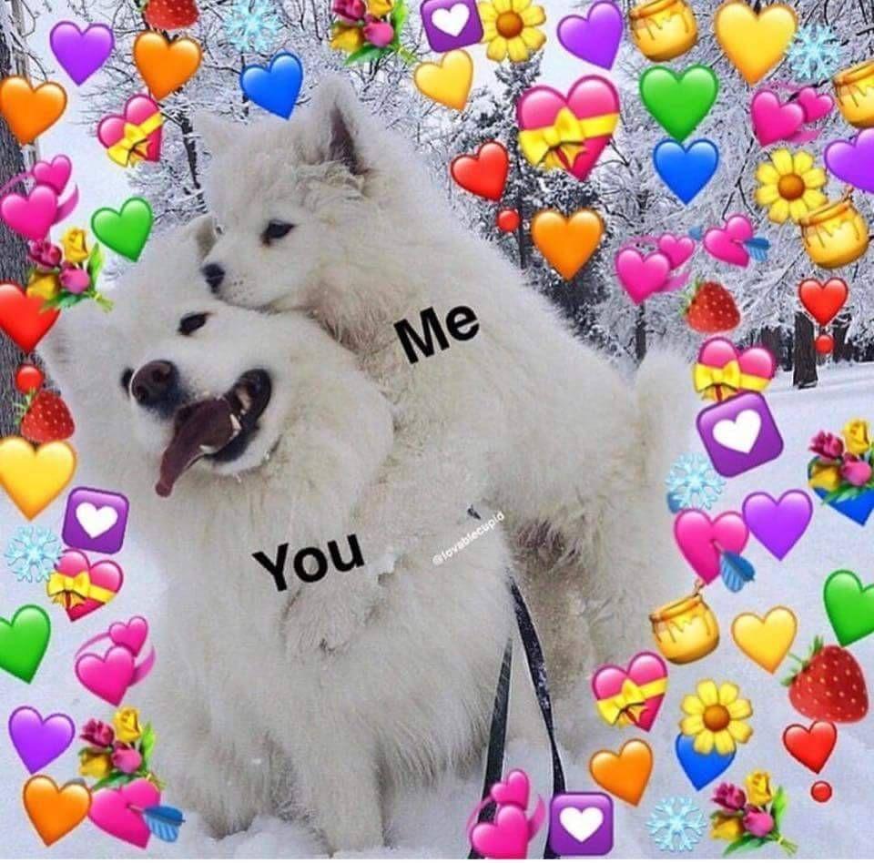 wholesome Cute love memes, Cute memes, Love memes