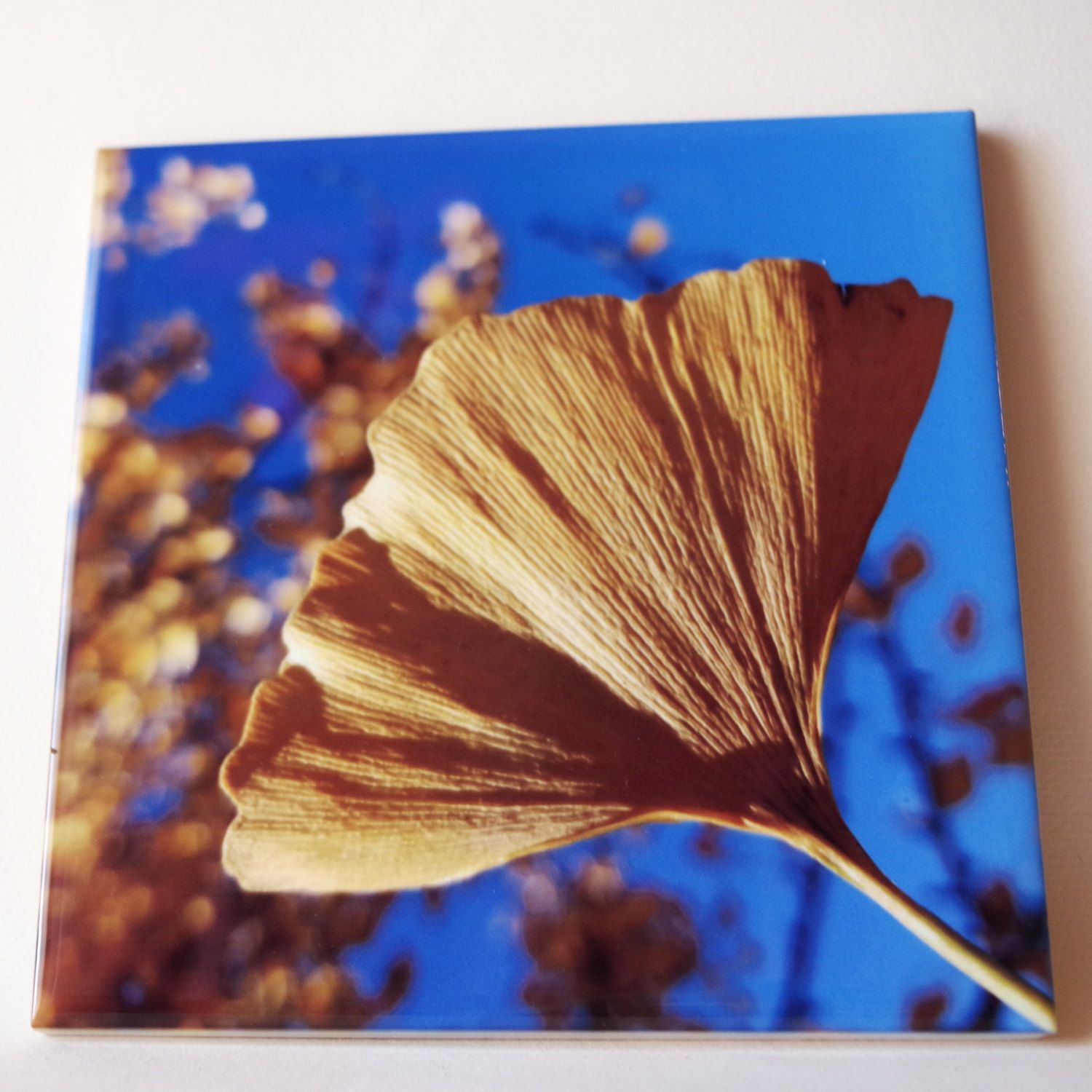Ceramic tile trivet ginkgo gold with sapphire blue sky autumn ceramic tile trivet ginkgo gold with sapphire blue sky autumn color photograph dailygadgetfo Choice Image