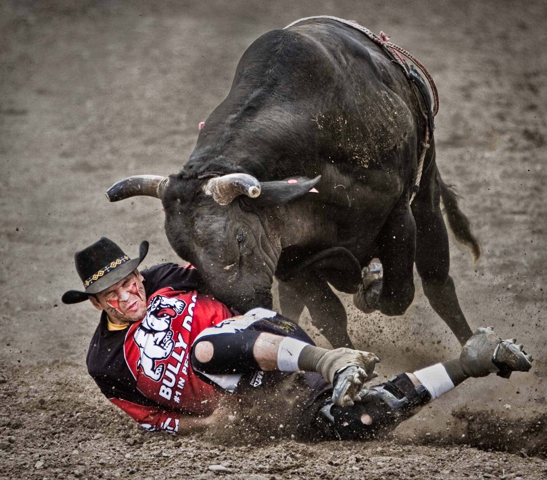 So You Want To Be A Cowboy Bull Riding Mike Pillows
