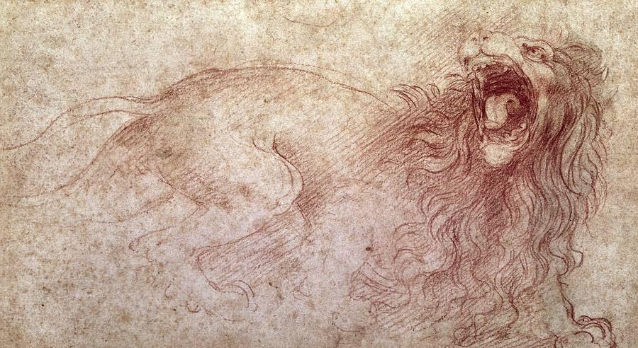 Sketch of a Roaring Lion - by Leonardo da Vinci