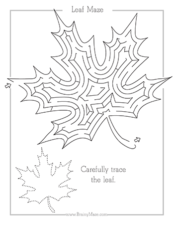A collection of Fall themed mazes and worksheets for kids