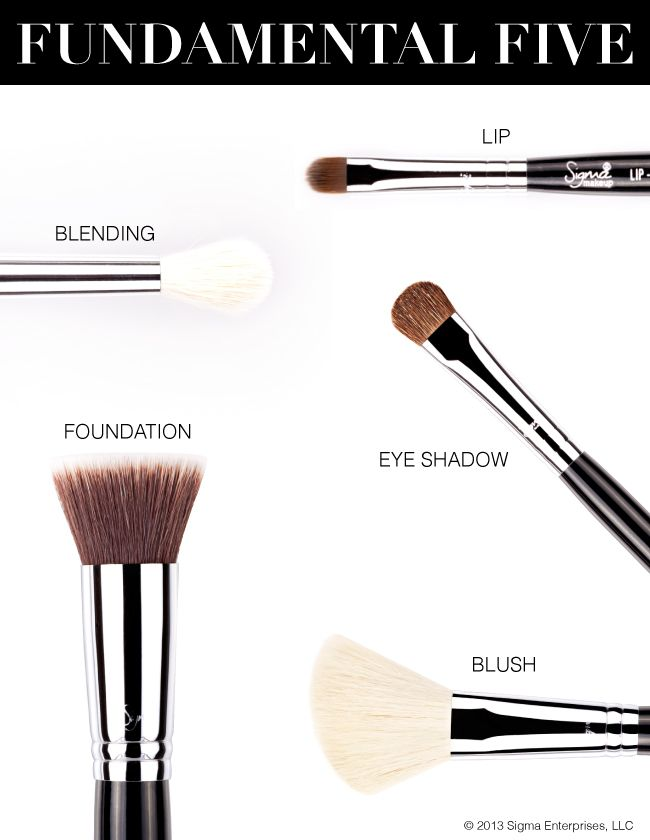 For the most superior makeup application, investing in quality brushes is your first step! Here are the five basic brushes we think everyone should have in their kit! #sigmabeauty Read more: http://www.sigmabeautytalk.com/2012/10/03/invest-in-your-beauty/