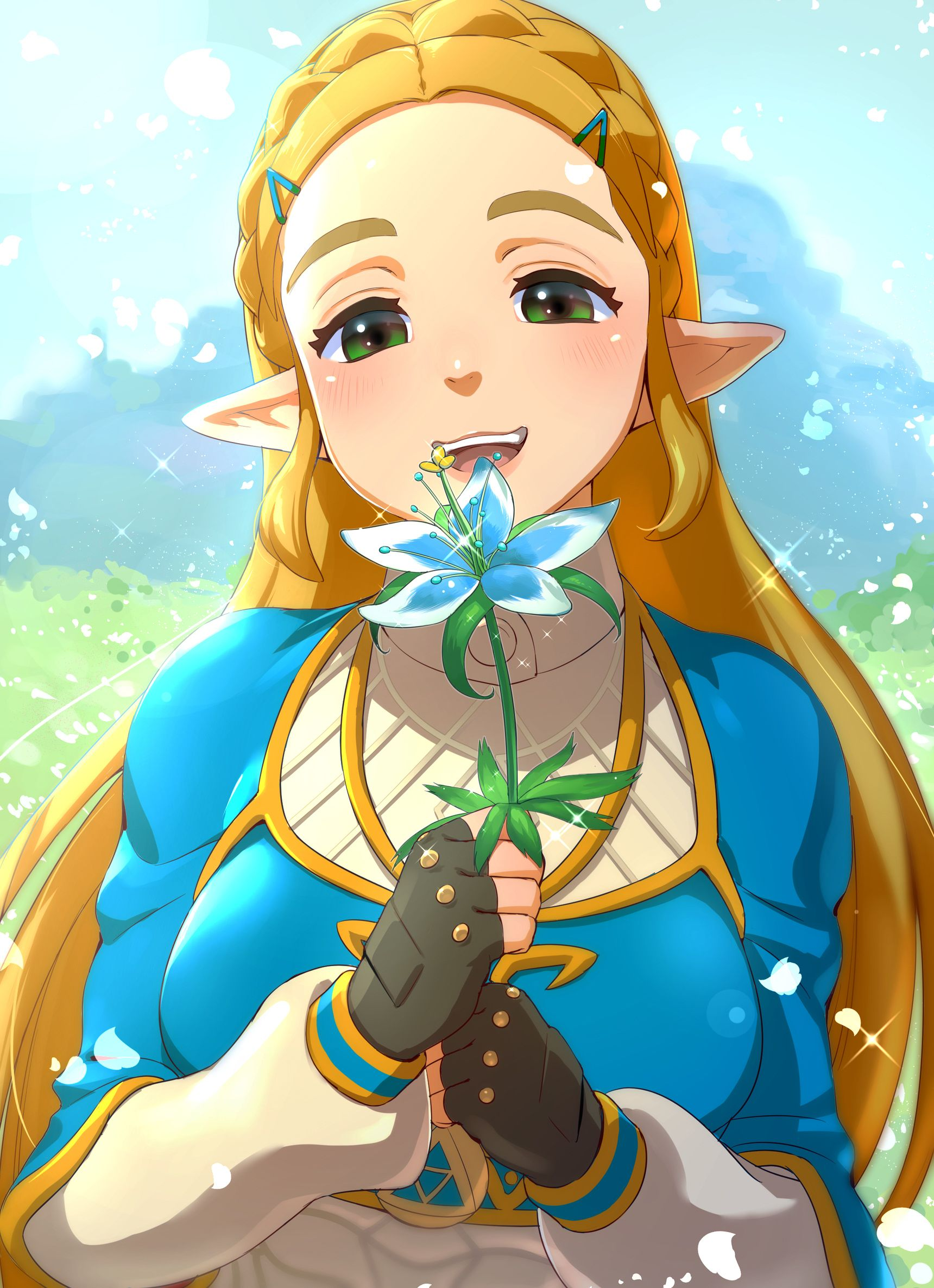 Princess Zelda Legend Of Zelda Breath Anime Breath Of