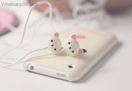 Cute girly beary headphones   whatsapp99.com