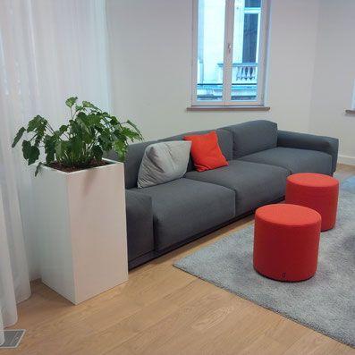 #Paysagisme d'intérieur #Paris #bureaux d'entreprises #openspace office #services généraux #landscape #Plante d'intérieur #plantesdebureau #décoration http://www.d-plantes.fr/d-plantes-fr/paysagiste-d-int%C3%A9rieur/