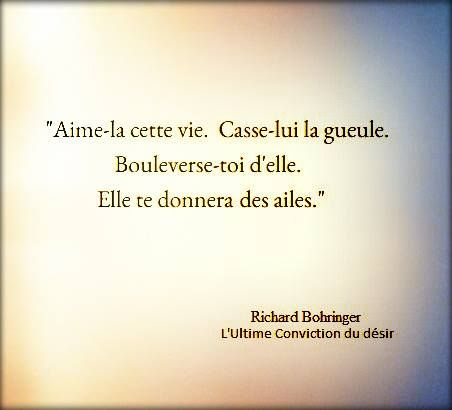 Richard Bohringer L Ultime Conviction Du Desir Richard