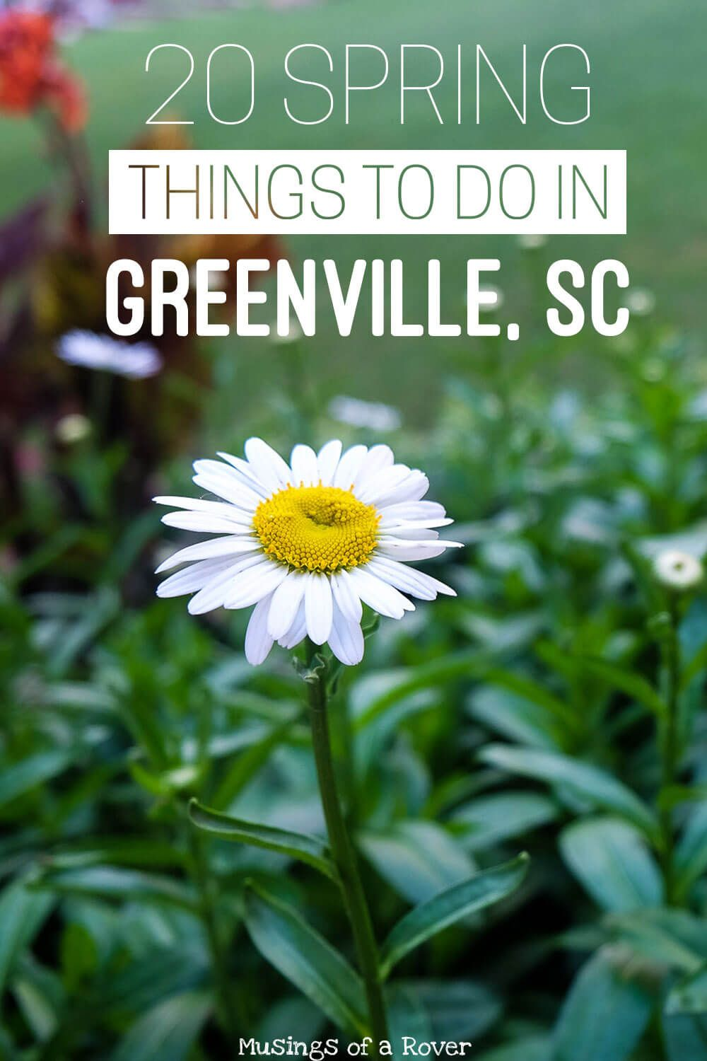 20 Things To Do in Greenville in Spring Day trips