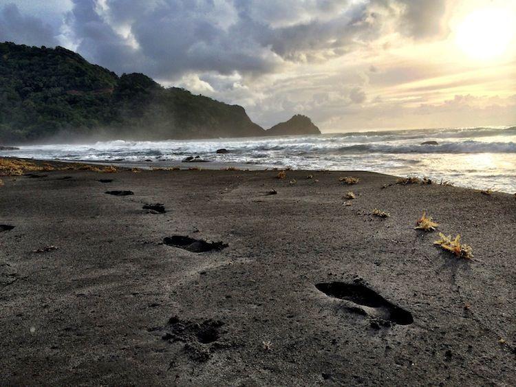 Adventurous Activities In Dominica Caribbean Black Sand Beach Dominica