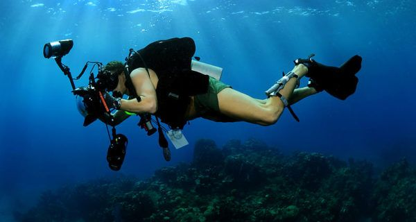 Three Aspects of Underwater Photography Diving, the Image, and - marine biologist job description
