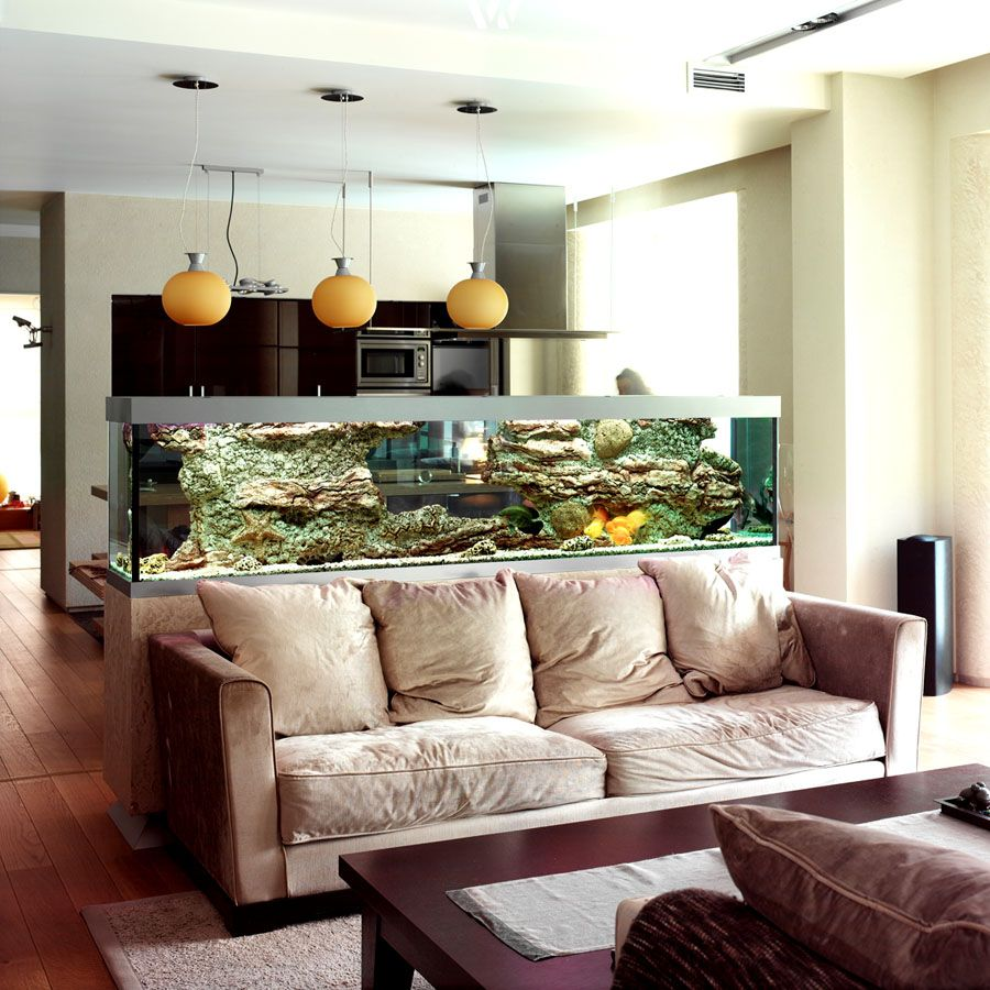 Ein Aquarium kann auch gut als Raumteiler genutzt werden Take a look ...