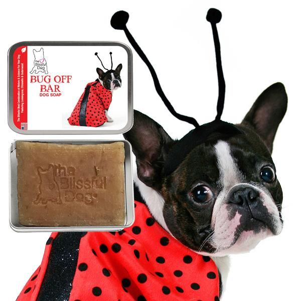 Bug Off Dog Bar Soap Boston Terrier Bug Off Terrier