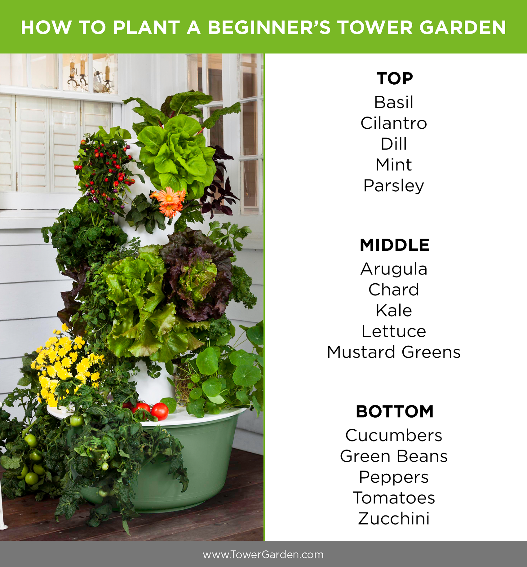Beginner Tower Garden Planting Plan Aeroponic No Dirt Grow