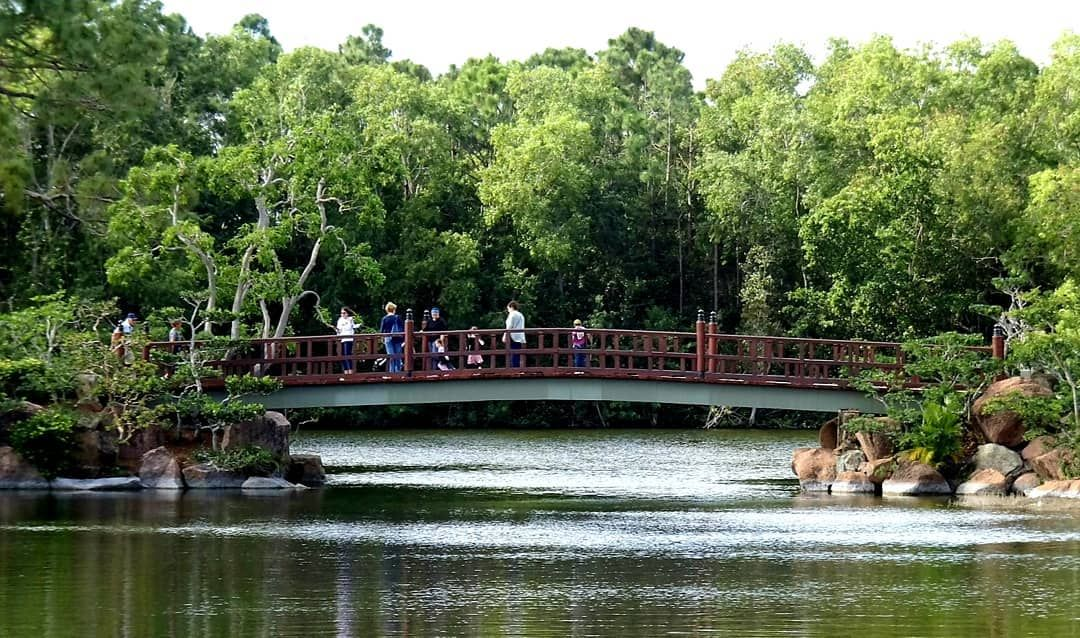 Morikami Japanese garden, Boca Raton, Florida. plants