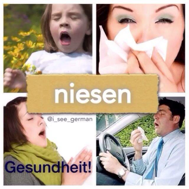 niesen:ruckartig und meistens laut Luft durch Nase und