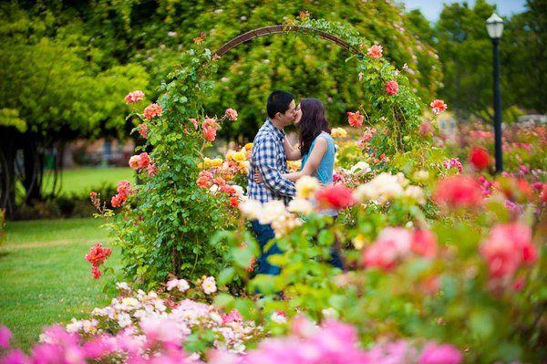 Engagement San Jose State University San Jose Municipal Rose Garden Engagement Photoshoot Engagement Photography Wedding Photography