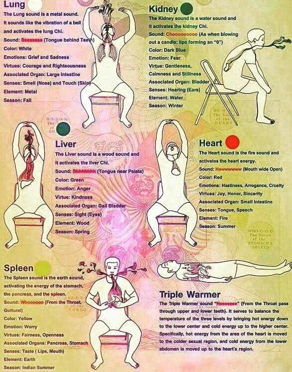 Breath work for organs | HEALTH for the better | Yoga