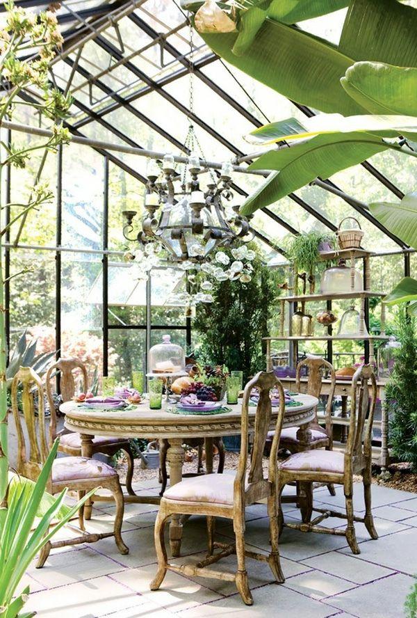 wintergarten selber machen bananenpalme 採光罩 Pinterest