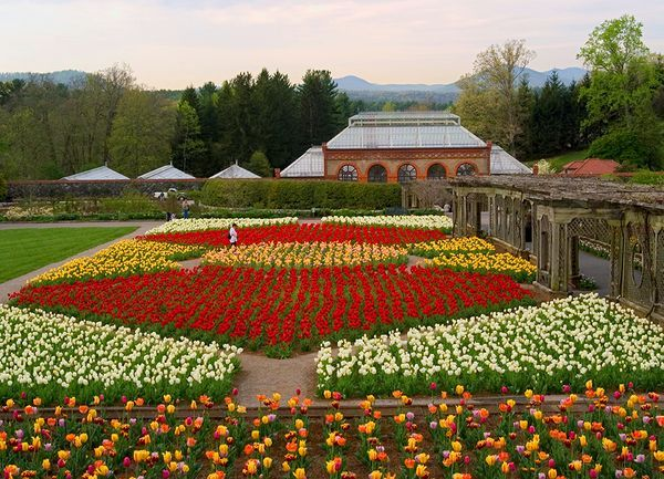 Picture Of The Biltmore Estate Gardens And Greenhouse From A Distance In  The Springtime