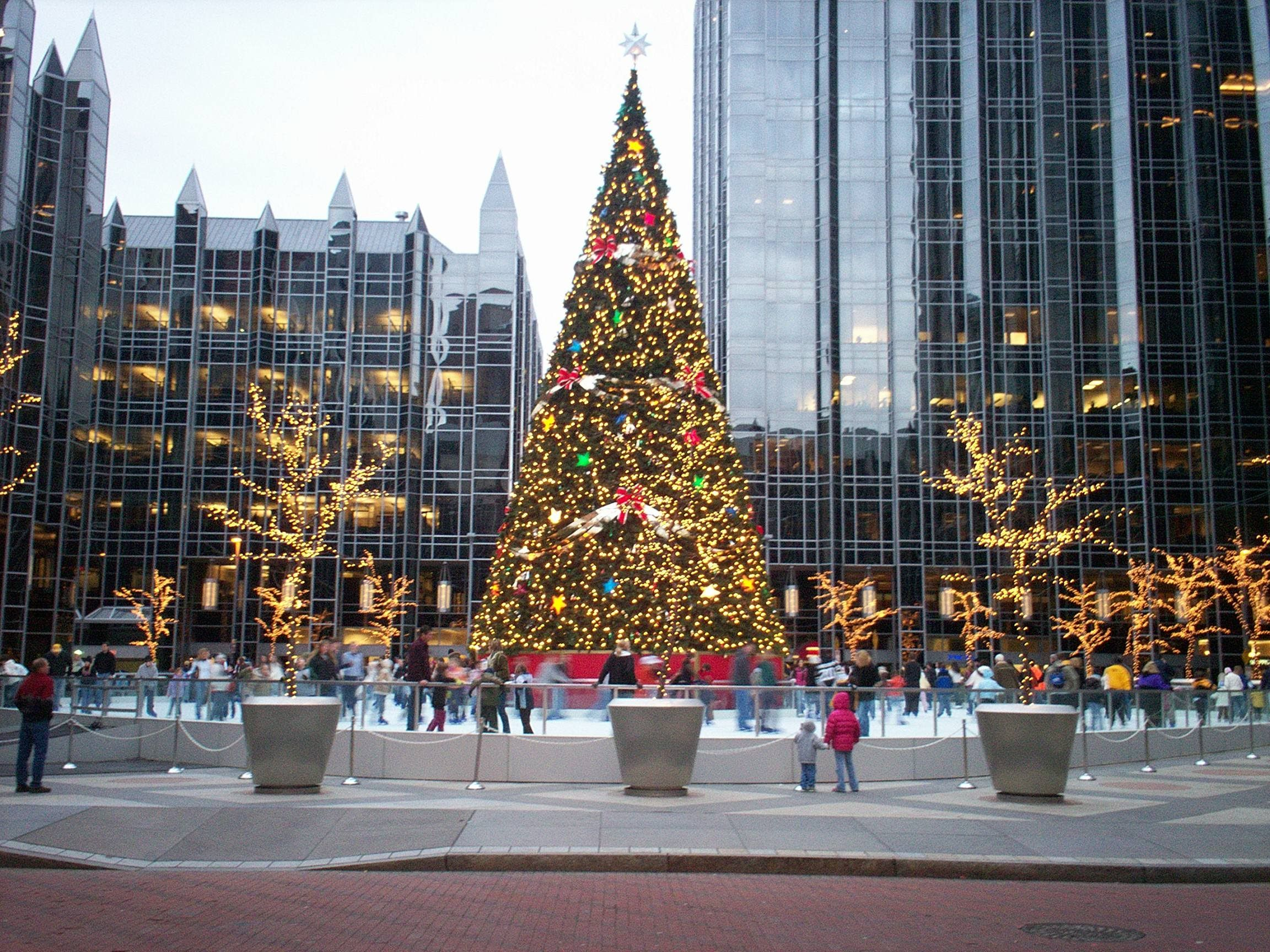 christmas pittsburgh pa | Christmas Tree in Downtown Pittsburgh ...