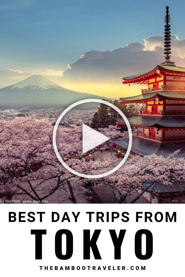 The 4 Best Day Trips from Tokyo - The Bamboo Traveler - Wondering where to go from a day trip from Tokyo - Read this article about the 4 best day trips from Tokyo - Mt. Fuji - Hakone - Kamakura - Nikko - Which one is the best? - Read and find out - Youll learn how to get to these day trip destinations, what to see and do there, and how to buy discount travel passes - Learn how to make your Japan trip even better - #Japan #Japantravel #beautifulplaces #daytrips #traveltips