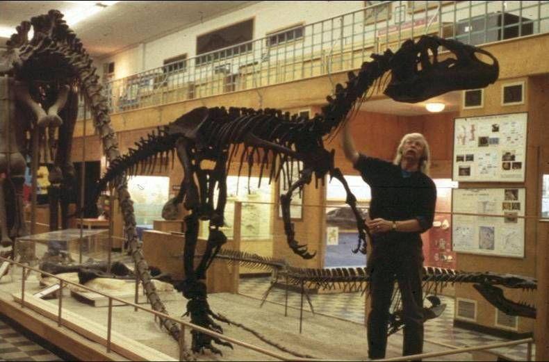 University Of Wyoming Geology Museum Wyoming Travel Wyoming