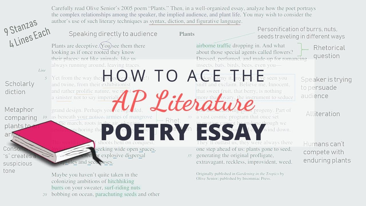 How to Ace the AP Lit Poetry Essay Annotate With Me