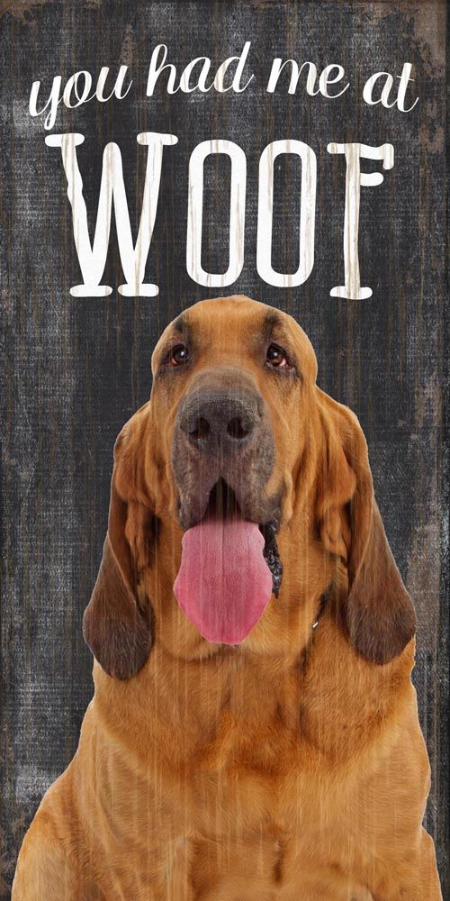 You Had me at WOOF 5x10 Bloodhound Sign