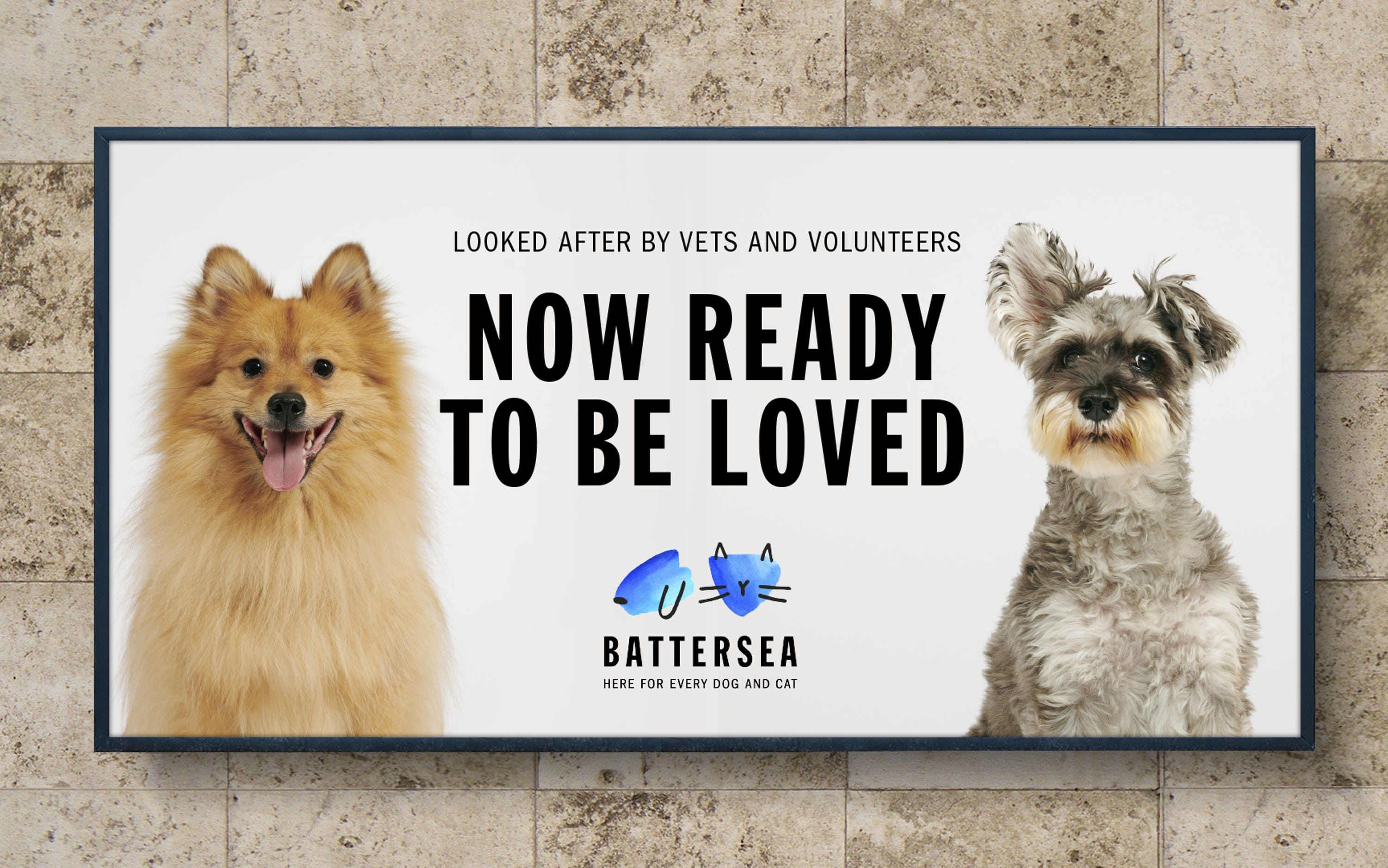 Battersea Brand Strategy Tone Of Voice And Visual Identity For One Of Britain S Oldest And Most Famous Ani Battersea Dogs Dog Charities Battersea Dogs Home