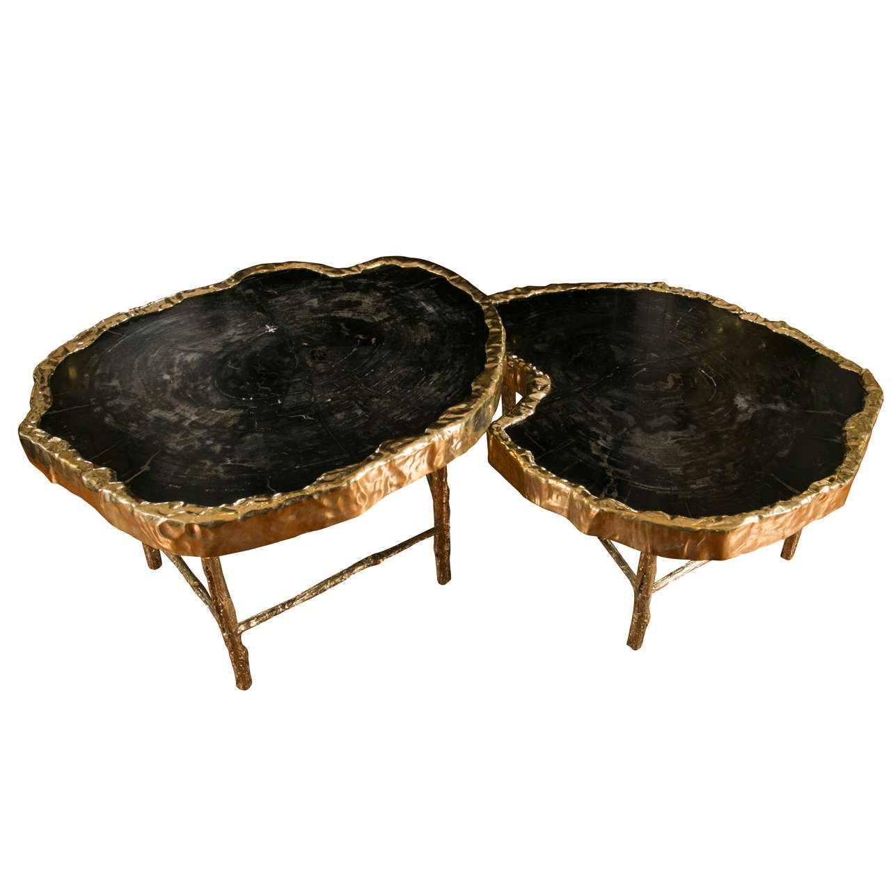 Fabulous pair of petrified wood coffee tables from a