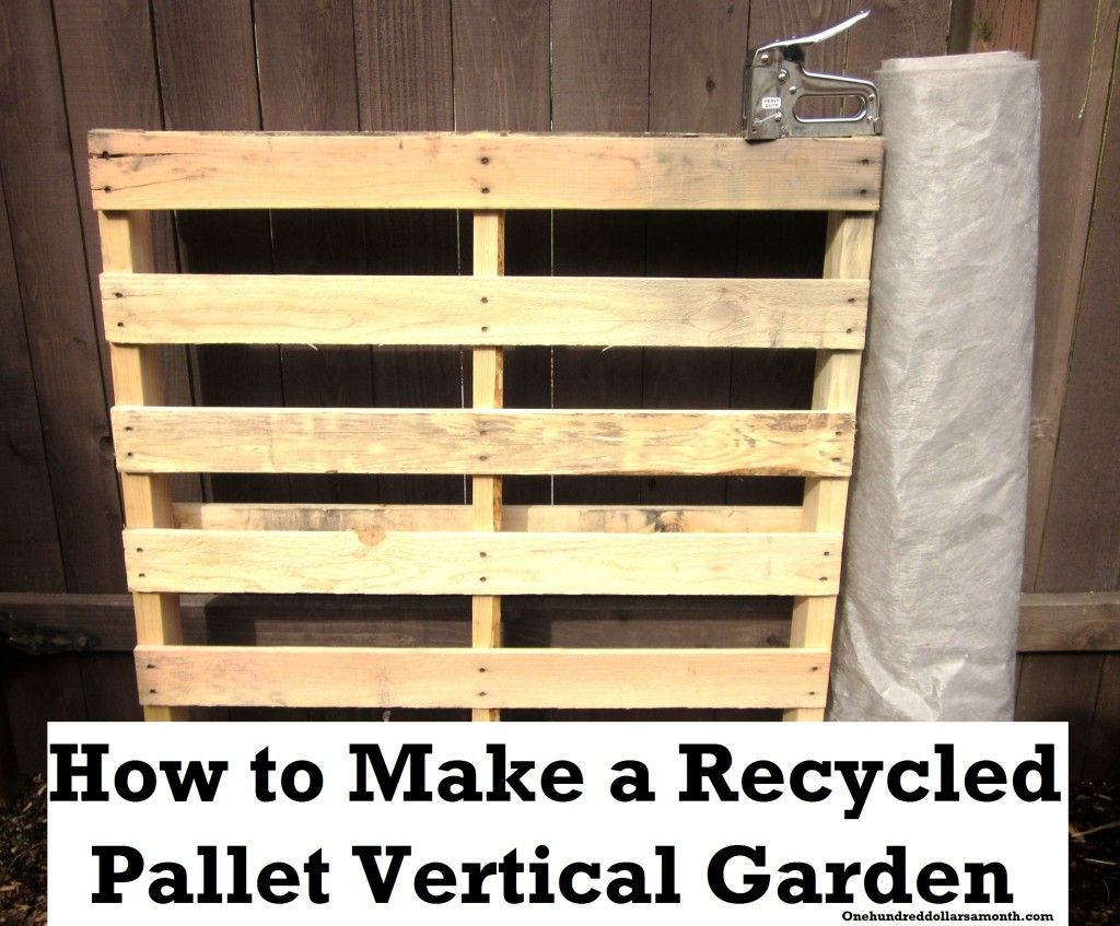 How to make a recycled pallet vertical garden pallets for How to make a vertical garden frame