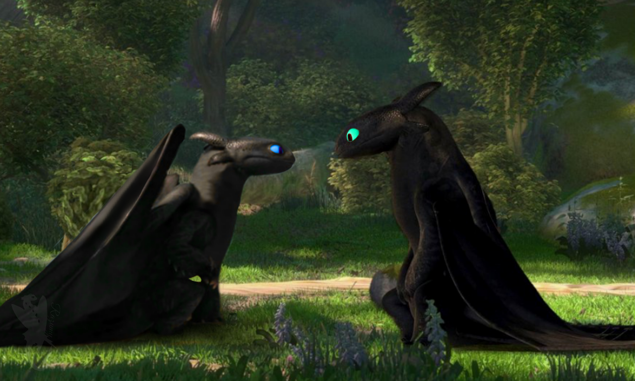 This Would Totally Be My Nightfury 6 Meeting Toothless 2 How Train Your Dragon Night Fury Dragon How To Train Dragon