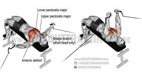 Decline cable fly. An isolation exercise. Target muscle
