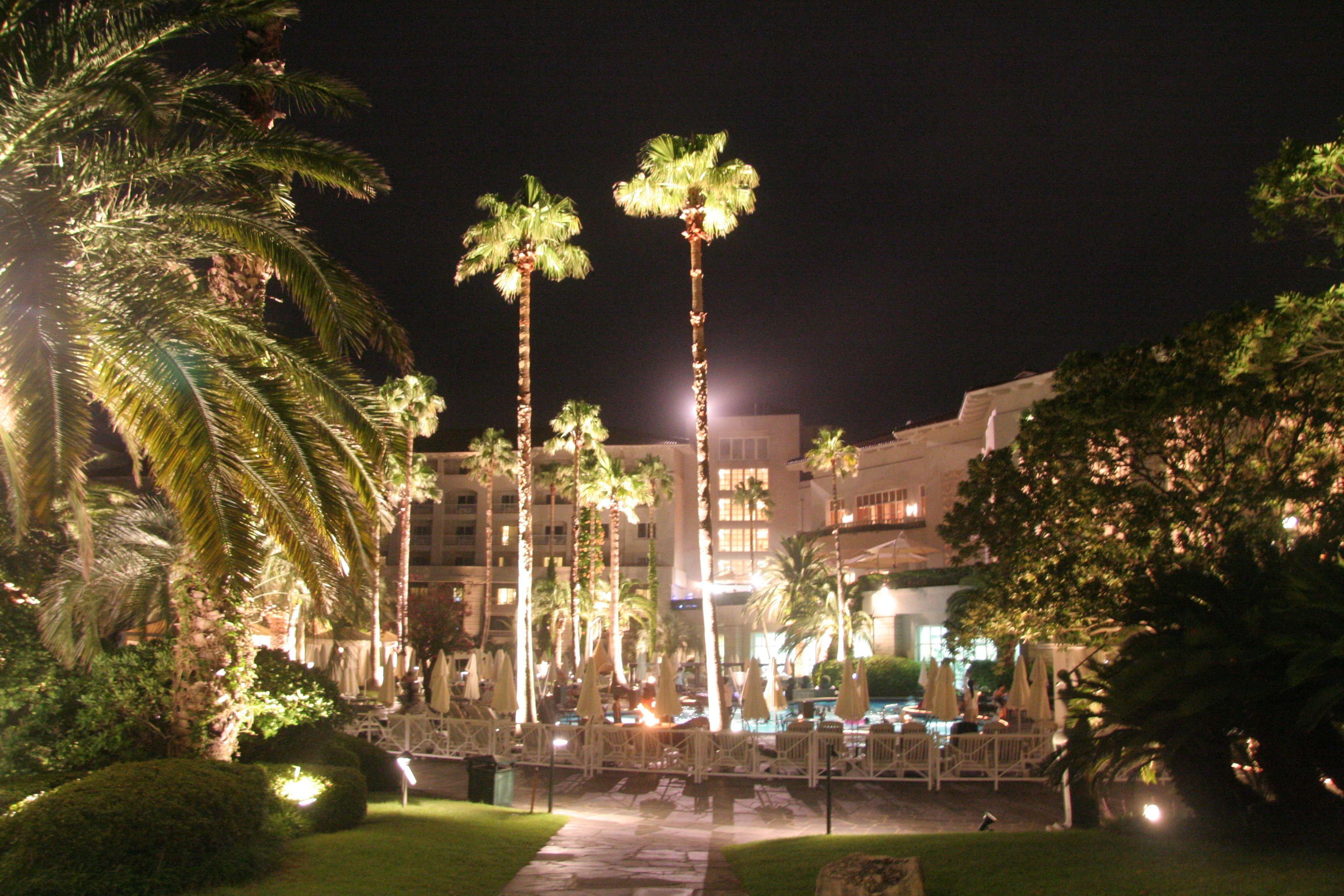 제주도호텔 제주 신라호텔   정원 야간 사진