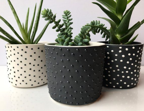 READY TO SHIP Studded succulent planter  modern succulent planter  small planter  ceramic planter  pottery planter  minimalist is part of Planters - blackandwhitedottedsmallplanterset ref shop home active 5