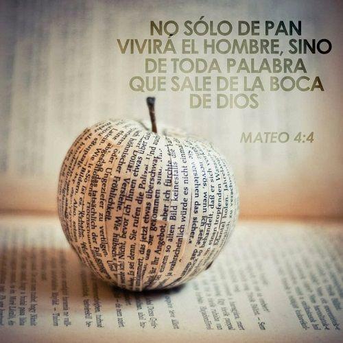 Mateo 4:4 El respondió y dijo: Escrito está: No sólo de pan vivirá el hombre, sino de toda palabra que sale de la boca de Dios.