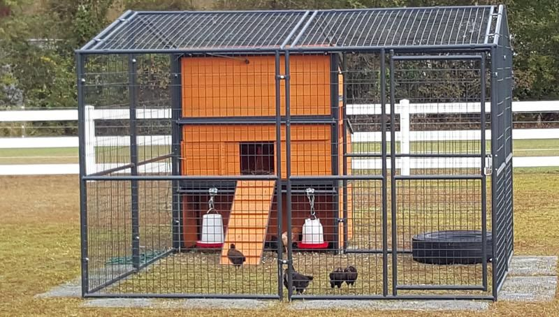 We Put A Hole In The Top To Run An Extension Cord In For The Heat Lamps We Got Our Chicks In October Chickens Backyard Chicken Coop Chickens