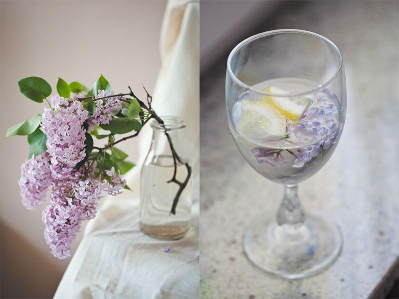 Czesc U Was Tez Na Pewno Kwitna Bzy Poza Tym Ze Kwiaty Bzu Pieknie Pachna To Edible Flowers Flowers Herbs