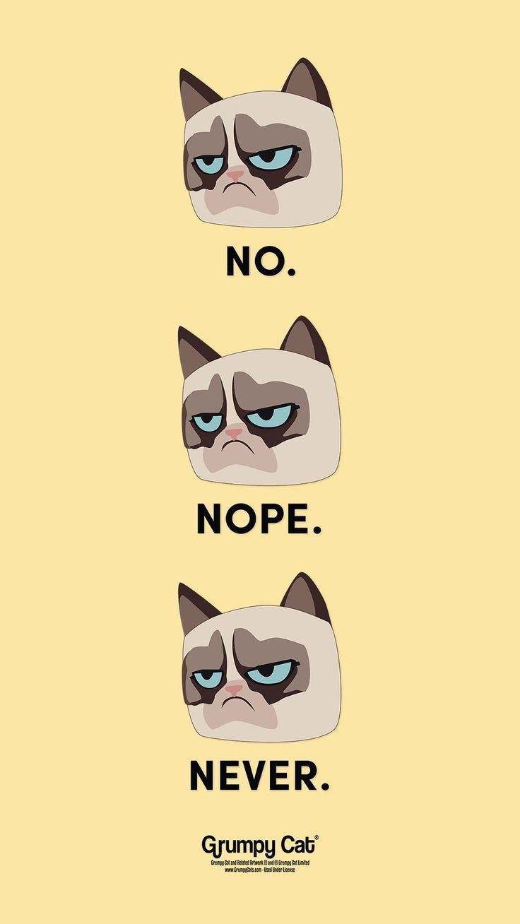No Never Nope By Grumpy Cat Would Be A Fun Wallpaper For Your Iphone Some Sarcastic And Attitude To Show Off