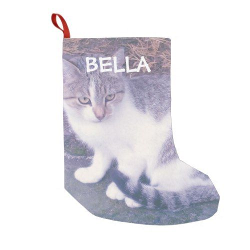 Personalized cat or dog pet photo custom Holiday Small Christmas