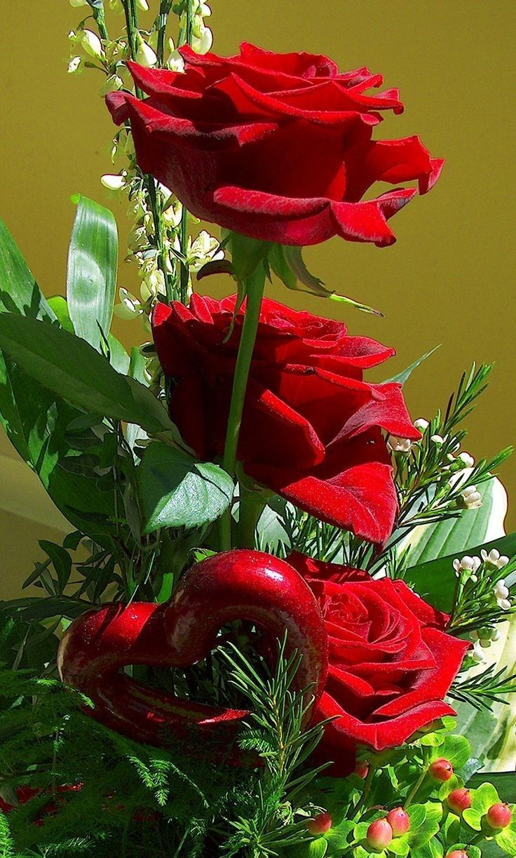 14 Flores hermosas
