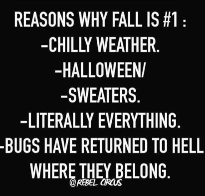 5cc6f4105b00c20f05fe327f0c74cbc3 21 memes for those obsessed with fall memes, 21st and humor