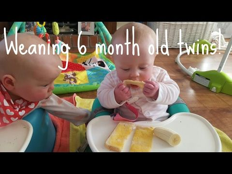 Baby led weaning 6 months youtube