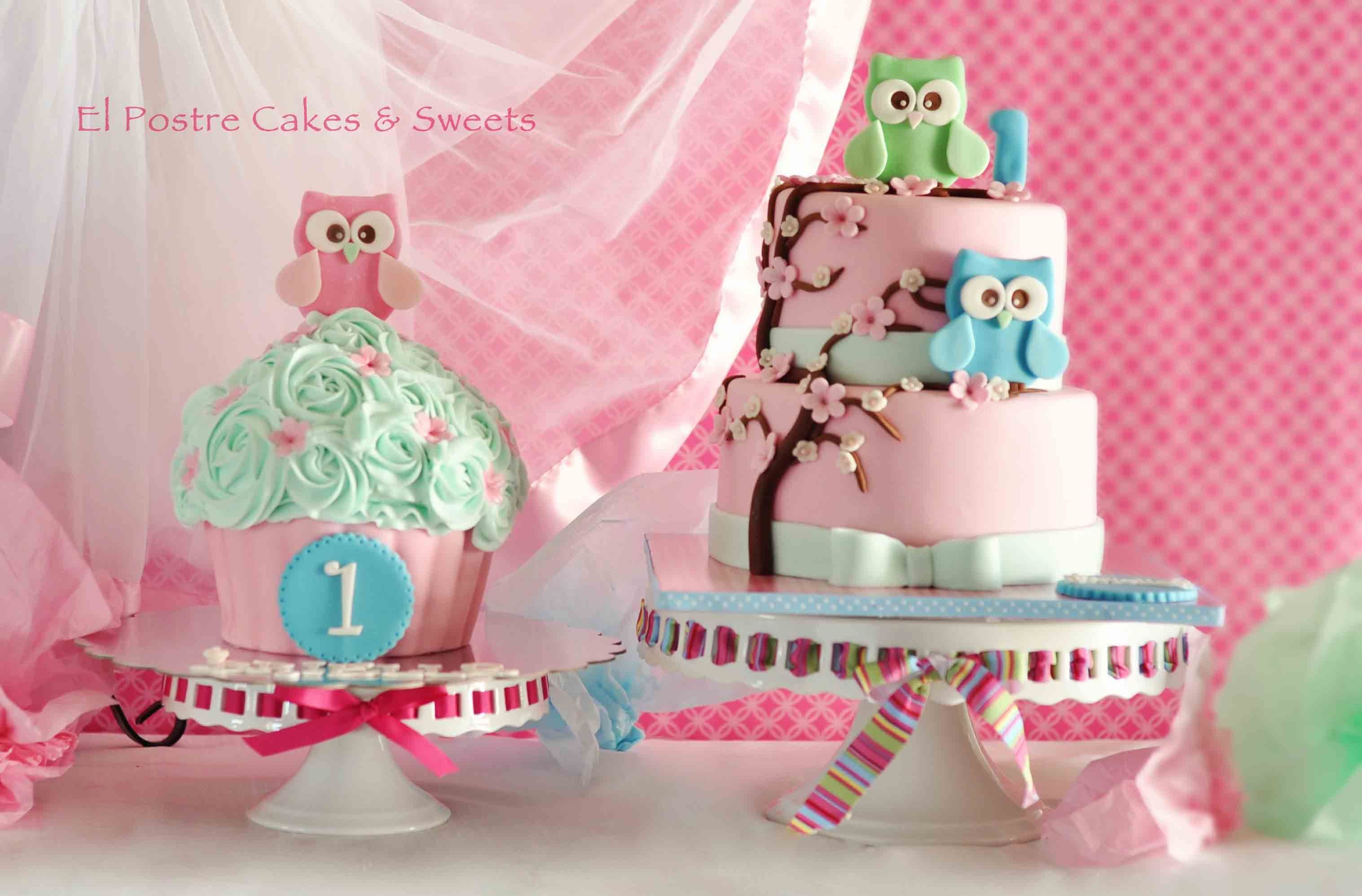 Owls Cake And Matching Giant Cupcake I Made This Two Tiers Cake